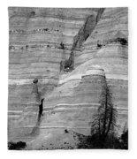 New Mexico - Tent Rocks Fleece Blanket