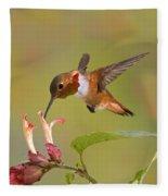 Allens Hummingbird Fleece Blanket