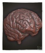 Clay Model Of Brain Fleece Blanket