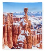 Eroded Rocks In A Canyon, Bryce Canyon Fleece Blanket