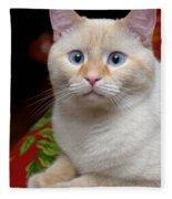 Flame Point Siamese Cat Fleece Blanket
