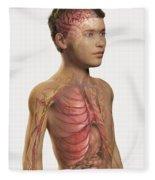 Internal Anatomy Pre-adolescent Fleece Blanket