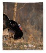 Male Eastern Wild Turkey Fleece Blanket