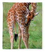 Reticulated Giraffe Fleece Blanket