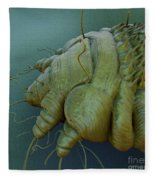 Scabies Mite Fleece Blanket