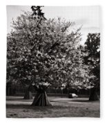Tree With Large White Flowers Fleece Blanket