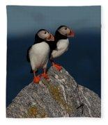 Atlantic Puffins Fratercula Arctica Fleece Blanket