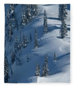 Backcountry Ski Traverse In Glacier Fleece Blanket
