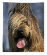 Briard Dog Fleece Blanket