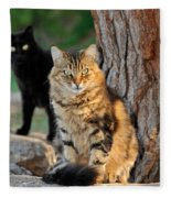 Cats In Hydra Island Fleece Blanket