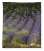 Lavender Field, France Fleece Blanket