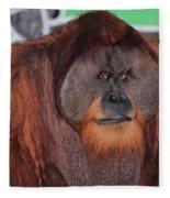 Portrait Of A Large Male Orangutan Fleece Blanket