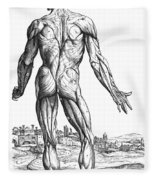 Vesalius: Muscles, 1543 Fleece Blanket