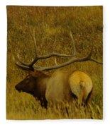 A Big Bull Elk Fleece Blanket