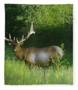 A Big Wide Rack  Fleece Blanket
