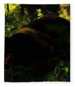 A Black Bear Fleece Blanket