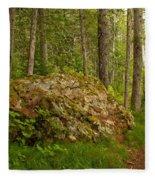 A Boulder In The Rainforest Fleece Blanket