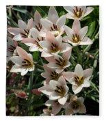 A Bouquet Of Miniature Tulips Celebrating The Spring Season - Vertical Fleece Blanket