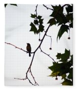 A Brown Thrasher Sings In Sycamore Tree Fleece Blanket