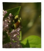 A Bumble Fleece Blanket