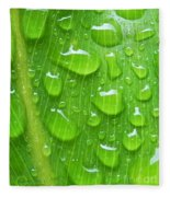 A Cleansing Morning Rain Fleece Blanket