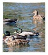A Cluster Duck Fleece Blanket