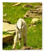A Goat Coming Down The Trail Fleece Blanket