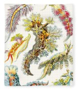A Collection Of Nudibranchia Fleece Blanket