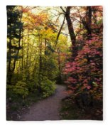 A Colorful Path  Fleece Blanket