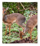 A Couple Of Dik-dik Antelopes In Tanzania. Africa Fleece Blanket