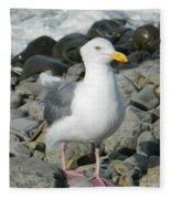 A Curious Seagull Fleece Blanket