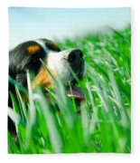 A Cute Dog In The Grass Fleece Blanket