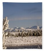 A Day Of Winter Fleece Blanket