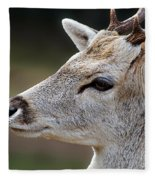 A Dear's Look Fleece Blanket