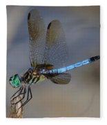A Dragonfly Iv Fleece Blanket