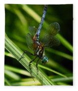 A Dragonfly Fleece Blanket