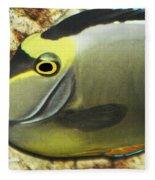 A Fish From The Ocean Fleece Blanket