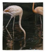 A Flamingo With Its Head Under Water In The Jurong Bird Park Fleece Blanket