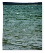 A Forster Tern Fighting The Winds Out At Sea Fleece Blanket