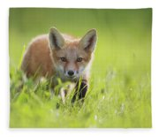 A Fox In The Grass  Montreal, Quebec Fleece Blanket
