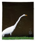 A Great Egret On Hilton Head Island Fleece Blanket