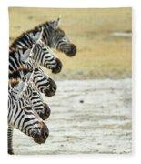 A Grevys Zebra In Ngorongoro Crater Fleece Blanket