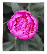 A Hint Of Pink In The Garden Fleece Blanket