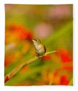 A Humming Bird Perched Fleece Blanket