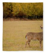 A Large Whitetail Buck Stairs Fleece Blanket