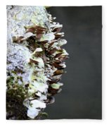 A Lichen Abstract 2013 Fleece Blanket