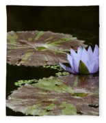 A Little Lavendar Water Lily Fleece Blanket