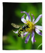 A Little Nectar Seeking Fruit Fly Fleece Blanket