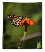 A Monarch Butterfly 1 Fleece Blanket
