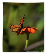 A Monarch Butterfly 4 Fleece Blanket
